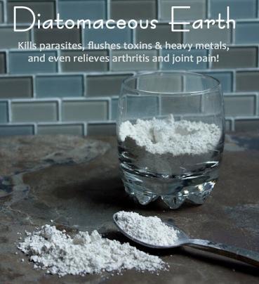 Diatomaceous Earth: The Dirt You Can Eat! De