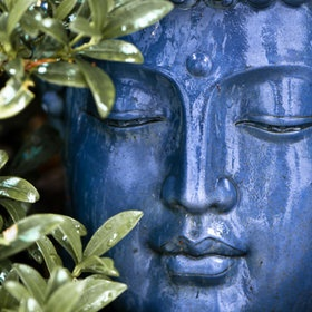 buddha .....